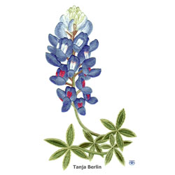 Blue Bonnet Needle Painting