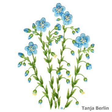 Blue Flax Needle Painting