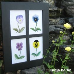 pansies-tanja-berlin1