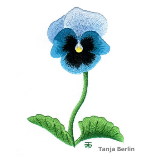 Blue Blotch Pansy