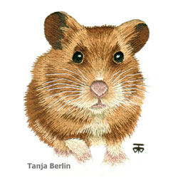 Jimmy the Hamster Needle Painting