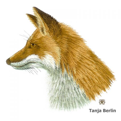 Red Fox Needle Painting