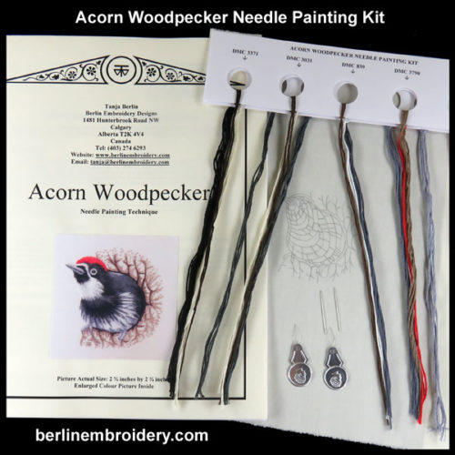 acorn-woodpecker-tanja-berlin-4